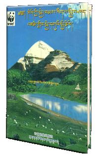 Book Cover (7)